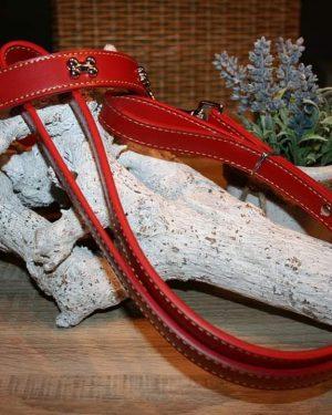 Set Halsband & Leine (5)