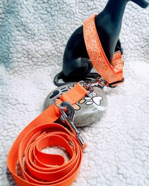Hundehalsband Rosen Orange