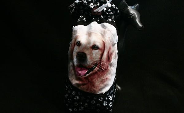 Unikat Labrador (1)