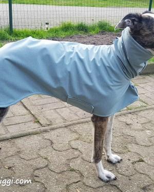 Hundemantel Softshell Graugrün (5)