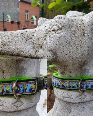 Hundehalsband Minions Gruen