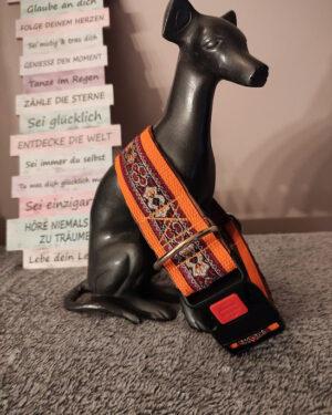 Hundehalsband Goldbordeaux Orange (6)